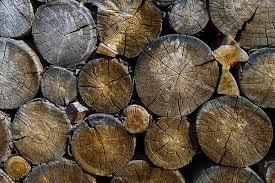 Eikenhout zie je steeds vaker terug in de keuken